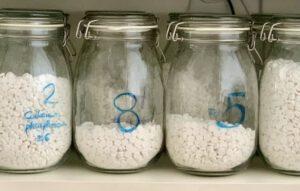 große Gläser mit Bügelverschluss, gefüllt mit Schüßler Salzen