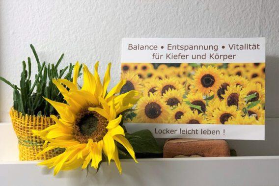 Postkarte mit Sonnenblumenfeld, daneben keiner Blumentopf und liegende Sonnenblume
