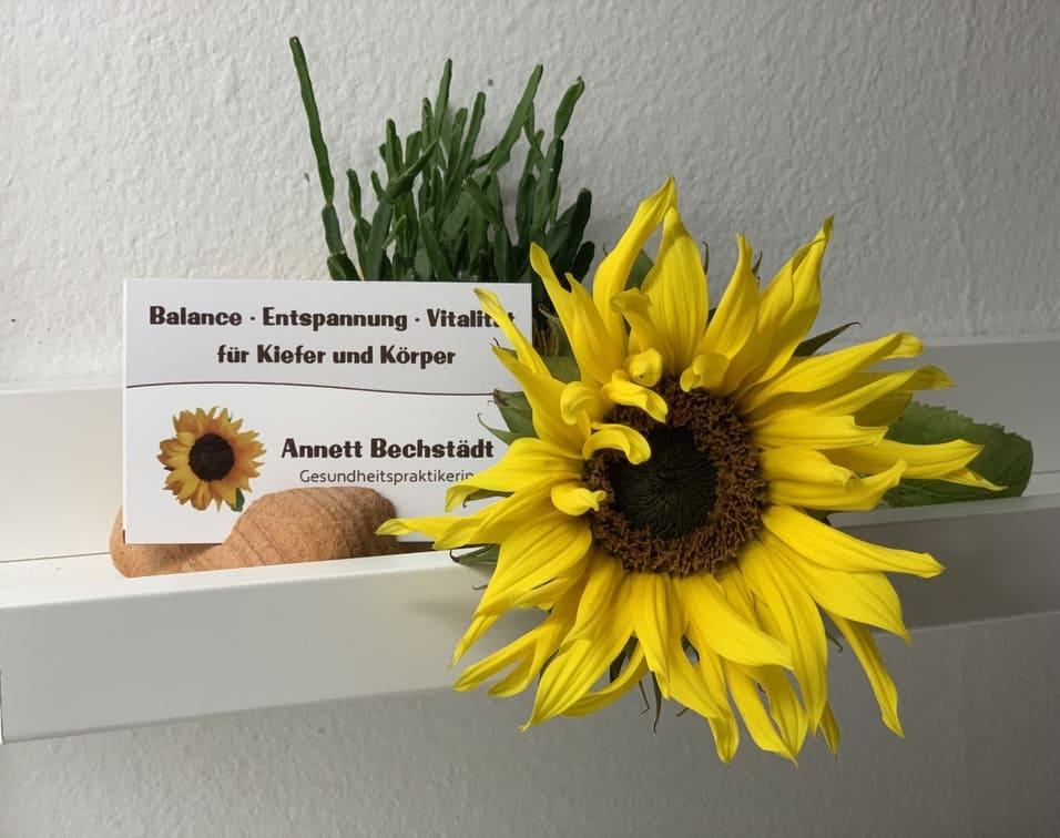 Sonnenblume mit Visitenkarte von Kieferentspannung München
